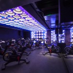 core_collective_gym