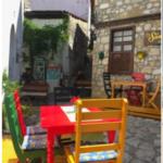 Turkey_SaraDarling